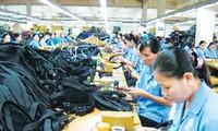 Pertukaran perdagangan Vietnam - Timur Tengah meningkat