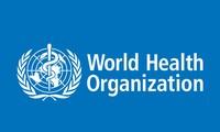 WHO  memprioritaskan  perang anti wabah radang hati dan tuberkulosis