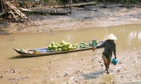Persidangan ke-43 Komite Gabungan dari Asosiasi Sungai Mekong Internasional
