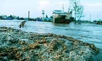 ВБ оказывает Вьетнаму помощь в реформировании электроэнергетики и борьбе с изменением климата