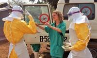 Появились позитивные признаки в борьбе с лихорадкой Эбола