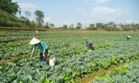 Община Шантханг провинции Лайтяу преодолела трудности в строительстве новой деревни
