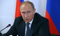 Путин подписал указ о временном запрете перелетов из России в Египет