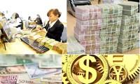 Правильная валютная политика – успех управленческой деятельности Правительства СРВ в 2015 году