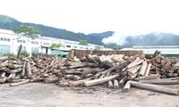Провинция Баккан стремится к развитию промышленных зон малого масштаба