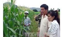 АТЭС отдаёт приоритет продовольственной безопасности и сельскому хозяйству