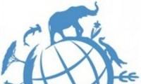 Вьетнам выдвинул меры по ликвидации торговли дикими животными