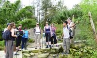 Вьетнам повышает качество туристических услуг в стране