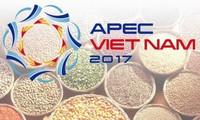 Вьетнам продолжает реализовать приоритетные направления Года АТЭС-2017