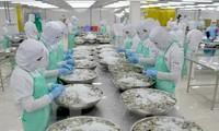Fitch: Вьетнам достигнет высоких темпов роста ВВП страны