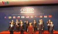 ВПСТТП – символ международной интеграции Вьетнама на новом уровне