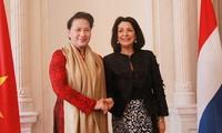 Дружба и сотрудничество между Вьетнамом и Нидерландами благотворно развиваются