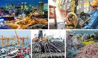 Наблюдаются яркие точки на панораме вьетнамской экономики