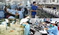 Роль частного сектора экономики в росте ВВП Вьетнама в 2019 году