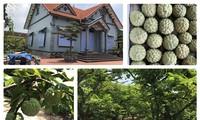Община Вьетзан признана первой во Вьетнаме образцовой новой деревней