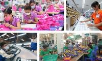 Реформы для эффективного использования возможностей, вытекающих из EVFTA