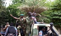 Германия, Британия и Франция сохранят военное присутствие в Мали, несмотря на переворот