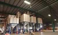 Вьетнамские предприятия активно развиваются благодаря Соглашению EVFTA