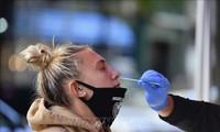 В мире более 37,5 млн человек заболели новым коронавирусом