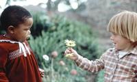 Tolérance : le plus beau cadeau de la vie