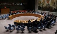 Syrie: le Conseil de sécurité de l'ONU vote l'envoi d'observateurs à Alep
