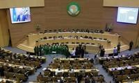 Addis-Abeba: les travaux de 28ème sommet de l'UA viennent de démarrer
