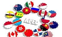 Ouverture de la 44ème réunion du groupe d'experts de l'APEC sur la propriété intellectuelle