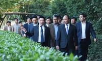 Nguyên Xuân Phuc offre des batonnets d'encens à la mémoire du président Ho Chi Minh