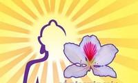 La fête bouddhique de la fleur de bauhinie 2017