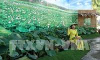 Ouverture de la Fête des fleurs de lotus à Dong Thap