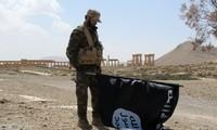 L'Afrique du Nord s'inquiète du retour des combattants de Daesh