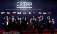 Le CPTPP apportera des intérêts économiques directs au Vietnam