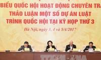 Le projet de loi sur les unités administatives économiques spéciales en débat