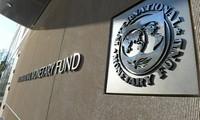 Le FMI accompagnera l'économie vietnamienne