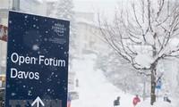 Les experts étrangers saluent le rôle du Vietnam au Forum économique mondial