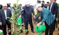Nguyên Thi Kim Ngân à la fête de plantation d'arbres à Hoa Binh
