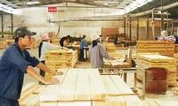 Le bois vietnamien peut entrer en Union européenne