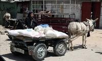 Le manque de fonds menace l'aide alimentaire pour les Palestiniens