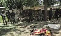 Cameroun: au moins 26 morts après une attaque de Boko Haram