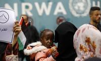 ONU: 110 millions de dollars pour l'agence s'occupant des réfugiés palestiniens