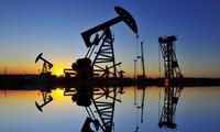 Les pays de l'Opep+ s'accordent sur une réduction supplémentaire de 500.000 barils par jour