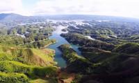 Le Vietnam participe à la Journée internationale de l'environnement