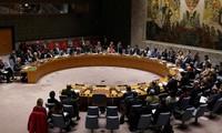 """Libye: le Forum de dialogue politique annonce la formation d'un """"comité consultatif"""""""