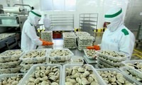 L'exportation des bivalves vers l'Union européenne en hausse