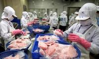 Chi hơn 100 tỷ đồng để nâng cao năng lực cạnh tranh ngành thủy sản