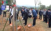 Chủ tịch nước Trần Đại Quang phát động Tết trồng cây đời đời nhớ ơn Chủ tịch Hồ Chí Minh