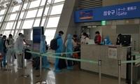 Đưa hơn 230 công dân Việt Nam từ Hàn Quốc về nước an toàn