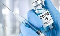 Việt Nam tiếp tục đàm phán mua vaccine ngừa COVID-19
