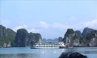 Tỉnh Quảng Ninh khẩn trương phục hồi và phát triển ngành du lịch, dịch vụ