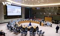 Việt Nam tiếp tục lên án hành vi sử dụng vũ khí hoá học tại Syria